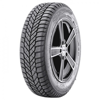 Diplomat Winter ST195/65R15[91]T